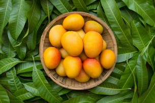mango, super fructul exotic - blog