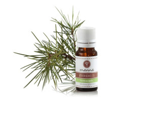 teebaum ätherisches Öl - empfohlen manna