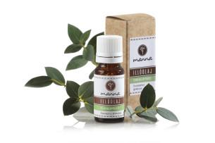 eukaliptusz illóolaj - ajánlott manna